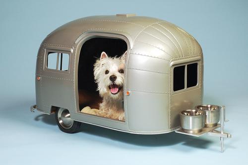 straightline dog camper
