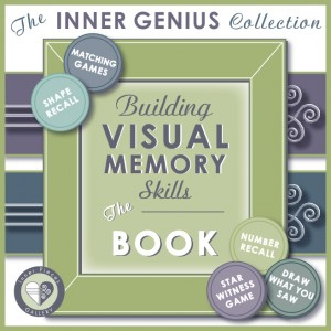 Visual-Memory-Book-Cover-Sq